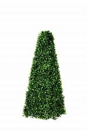 Boxwood Pyramid 25cm x 25cm x 65cm tall